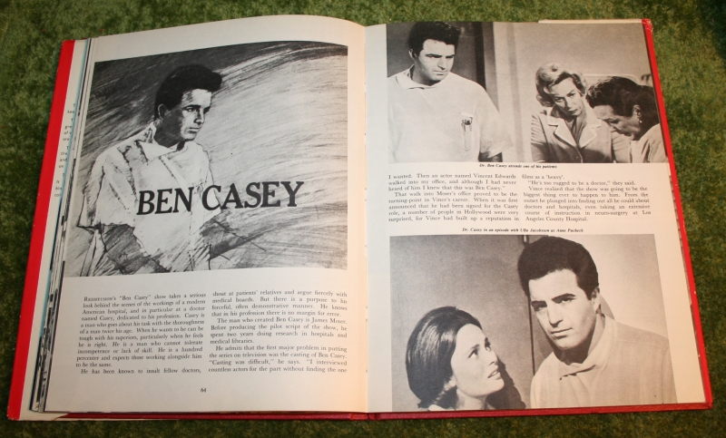 1965 Television show book (22)