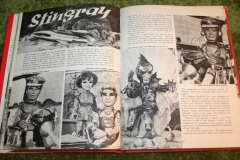 1965 Television show book (19)