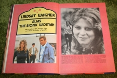 Bionic Woman Annual (4)