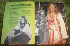 Bionic Woman Annual (7)