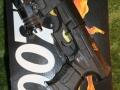 007-twine-gun-sights