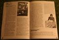 Avengers Fan Club mag 1981 (13)