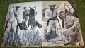 lone ranger adventure stories 1957 (3)