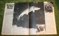 look in 1971 25 (13)