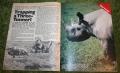Look in 1971 no 19 (11).JPG