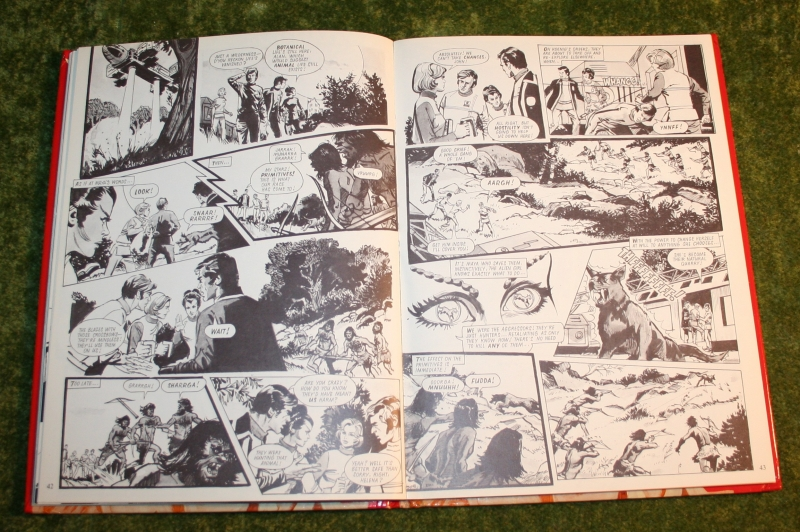 Look in annual (c) 1977 (15)