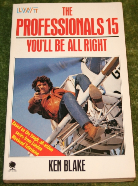 professionals paperback 15