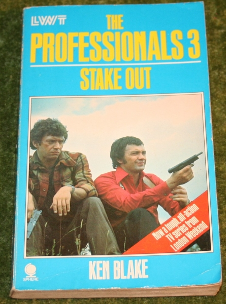 professionals paperback 3