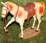 Scout Lone Ranger horse (2).JPG