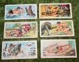 Tarzan sweet cig cards (2)
