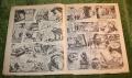 tv comic 1381 (3)